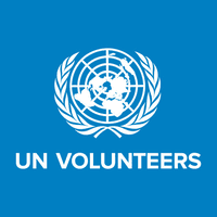 UN Volunteers, Information Technology Assistant Job.